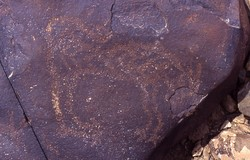 Petroglyph: Animal